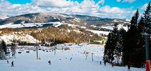 splay ski