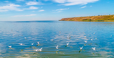 Dnipro Buzky estuary
