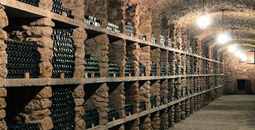 ekskursii vina trubeckogo 02 1024x683