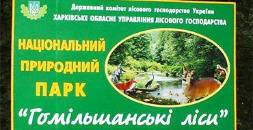 gomolshanskie lesa 3