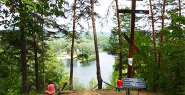 gomolshanskie lesa 4
