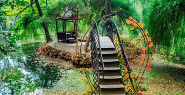 krasnokutskiy dendropark 002