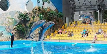 delfinarij nemo ukraina