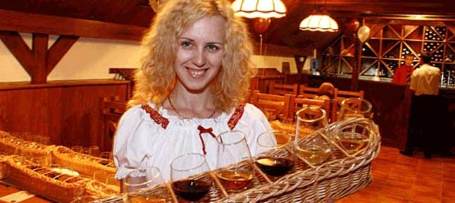 The sun in a glass. Wine tour of Transcarpathia