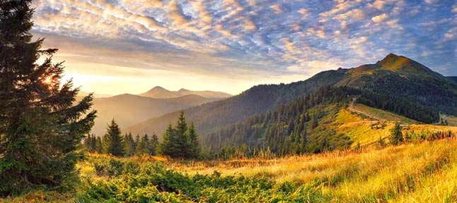 The High Carpathians. From Bukovel to Hoverla