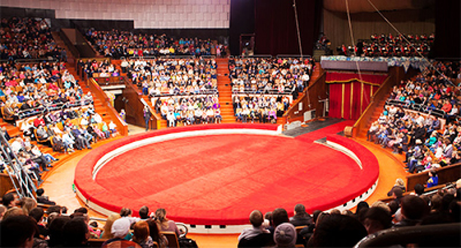 For the first time in the arena! Three Kharkov circuses