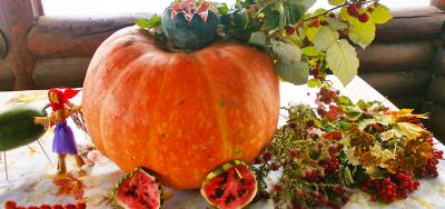 Święto plonów. Jesień w Cantacuzovka