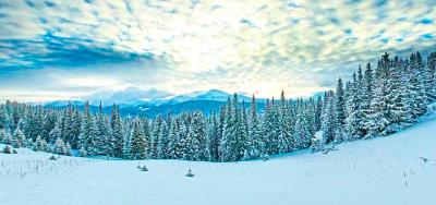 MEGA-wycieczka do Karpat na Nowy Rok!
