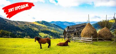 Lato w Karpatach. 7 dni w Worochcie